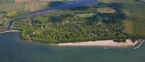 Belvedere Pineta beach