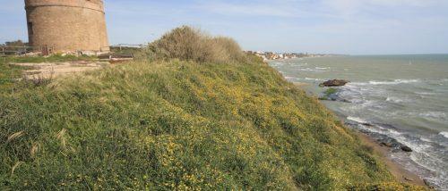 Tor Caldara beach