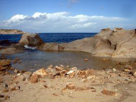 Cala degli Alberi - Isola del Giglio