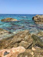 Scogliera di Punta Pacì di Scilla, Calabria