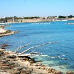 Spiaggia Bisceglie - Puglia