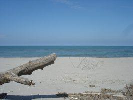 Spiaggia Boccasette, Porto Tolle, Veneto