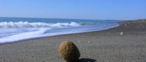 Spiaggia di Capo Portiere