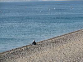 Spiaggia Catanzaro Lido
