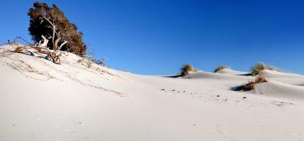 Spiaggia Is Arenas Biancas - Teulada - Sardegna