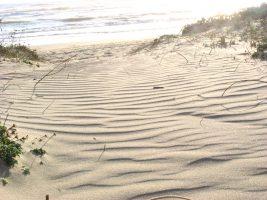 Spiaggia Lido dei Gigli - Anzio - Lavinio