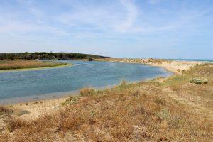 Spiaggia della Bassona - Lido di Classe - Emilia Romagna