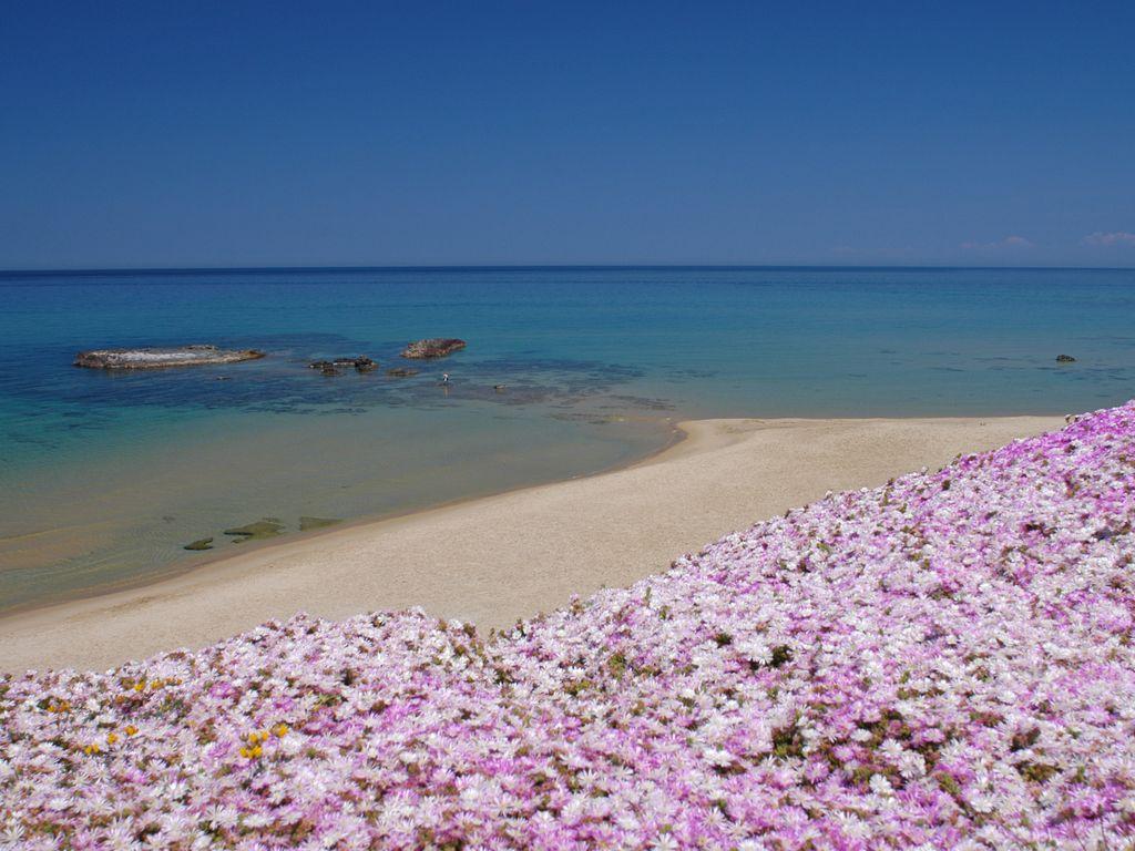 Spiaggia Lu Bagnu - Castelsardo