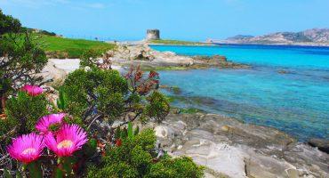 Spiaggia La Pelosa di Stintino, Sardegna