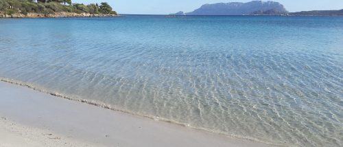 Spiaggia Lo Squalo, Pittulongu - Olbia - Sardegna