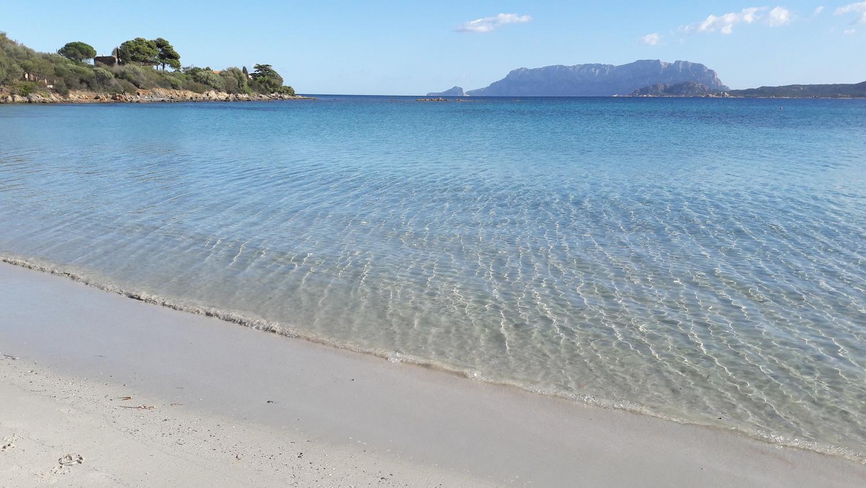 Spiagge di Pittulongu