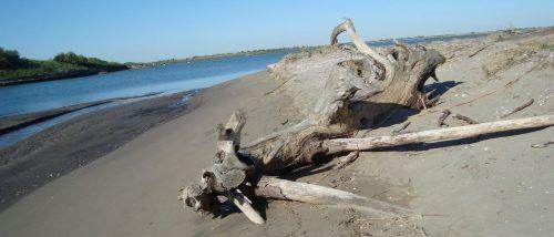 Spiaggia di Porto Caleri
