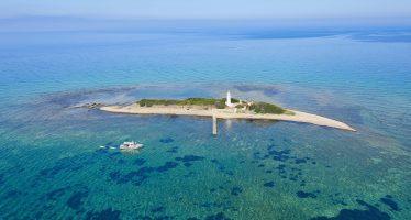 Spiaggia Punta Licosa, Castellabate, Cilento