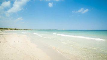 Spiaggia di Torre Guaceto - Salento - Puglia