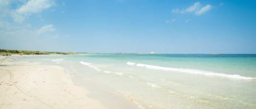 Spiaggia di Torre Guaceto