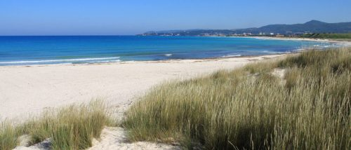 Spiaggia di Vada
