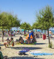 Spiaggia delle Tamerici - Spiaggia vegetale - Valverde - Cesenatico