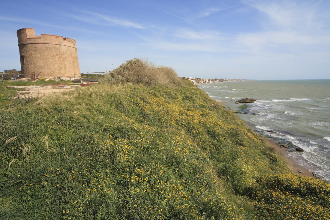 Spiaggia di Tor Caldara