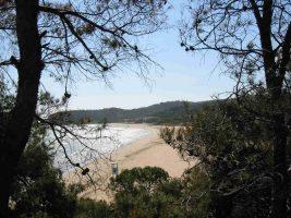 Spiaggia di Porto Nuovo