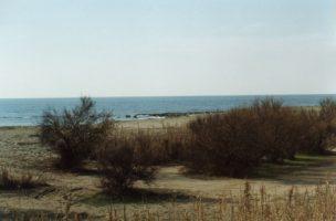 Spiaggia di Borraco