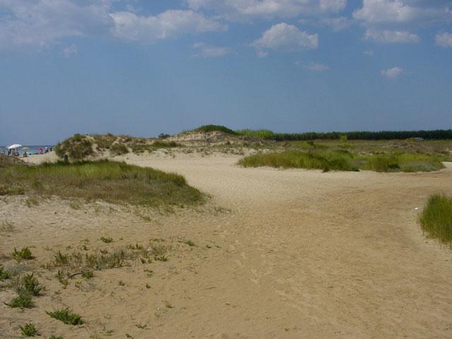 Spiaggia Torre Vado