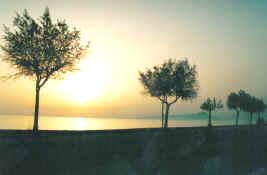 Spiaggia Tortora Marina - Calabria