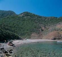 Cala dei Mangani - Isola d'Elba