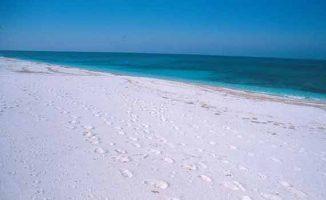 Spiaggia Is Arutas - Cabras - Sardegna