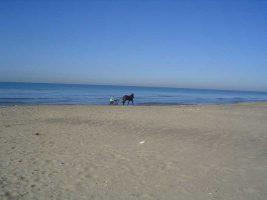 Spiaggia Marina di Ardea