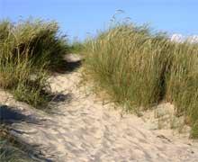 spiaggia Lido di Fondi