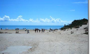 Spiaggia Punta braccetto