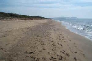 Spiaggia di Rimigliano - Toscana