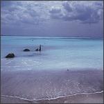 Spiaggia bianca di Rosignano Solvay