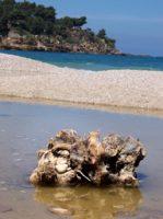 Spiaggia Scopello