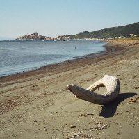 Spiagge Talamone