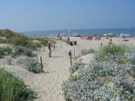 Calambrone - Spiaggia