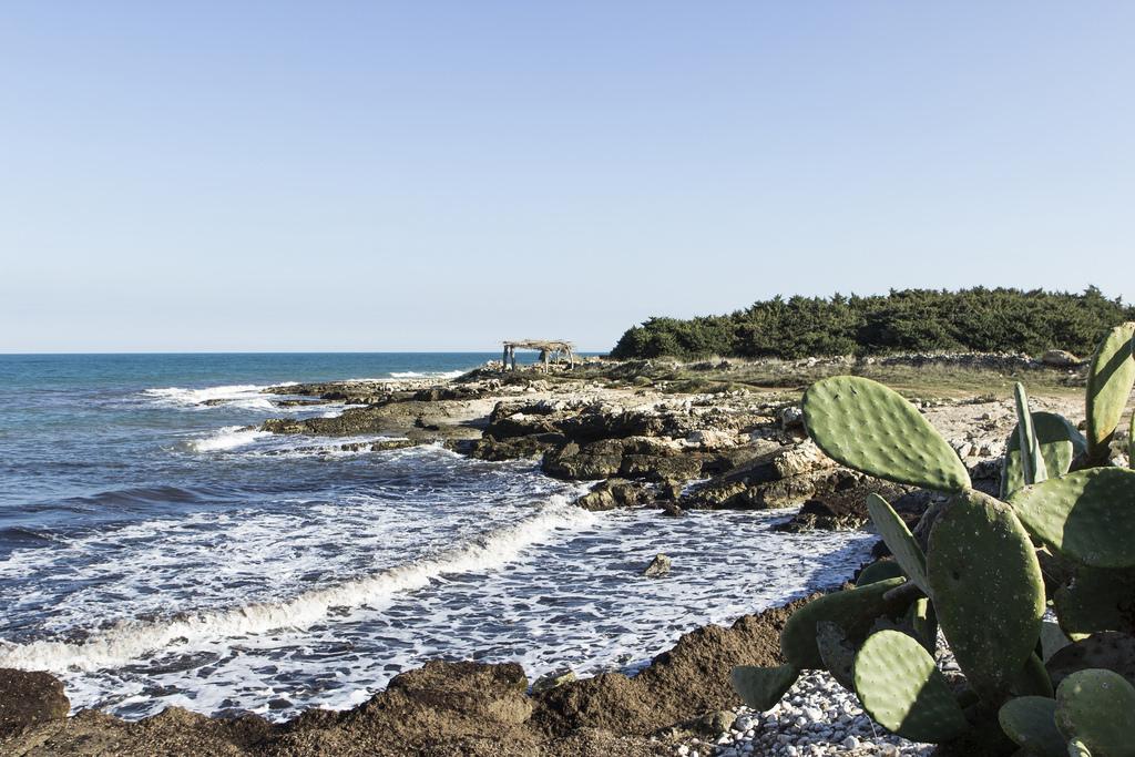 Spiaggia di Cala Ripagnola