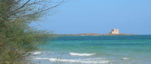 Spiaggia Punta Penna Grossa - Torre Guaceto - Carovigno