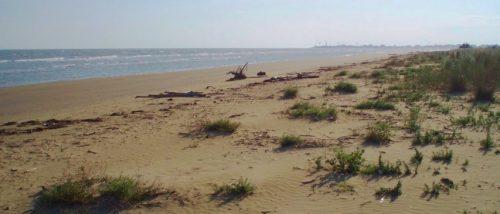 Spiaggia della Brussa