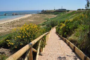 Spiaggia Punta Penna - Vasto