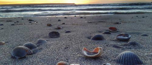Spiaggia di Arborea