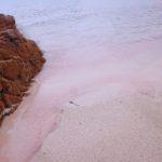 Spiagge colorate - sabbia rosa - Budelli