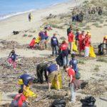 Volontari - Pulizia spiagge italiane