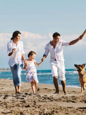 Spiagge italiane accessibili: dove andare in vacanza con bambini e cani
