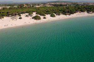 Spiagge Alghero, Conchiglia, Sardegna