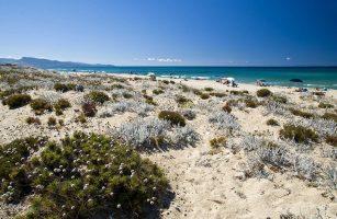 Spiaggia di Poltu Biancu - Badesi - Sardegna