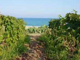 Spiaggia Madonna di Mare, Cirò Marina, Calabria