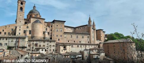 Esperienze e tour guidati nella Regione Marche