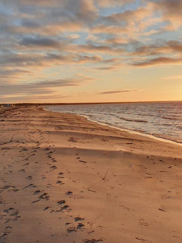 Cosa fare sulla spiaggia in autunno?